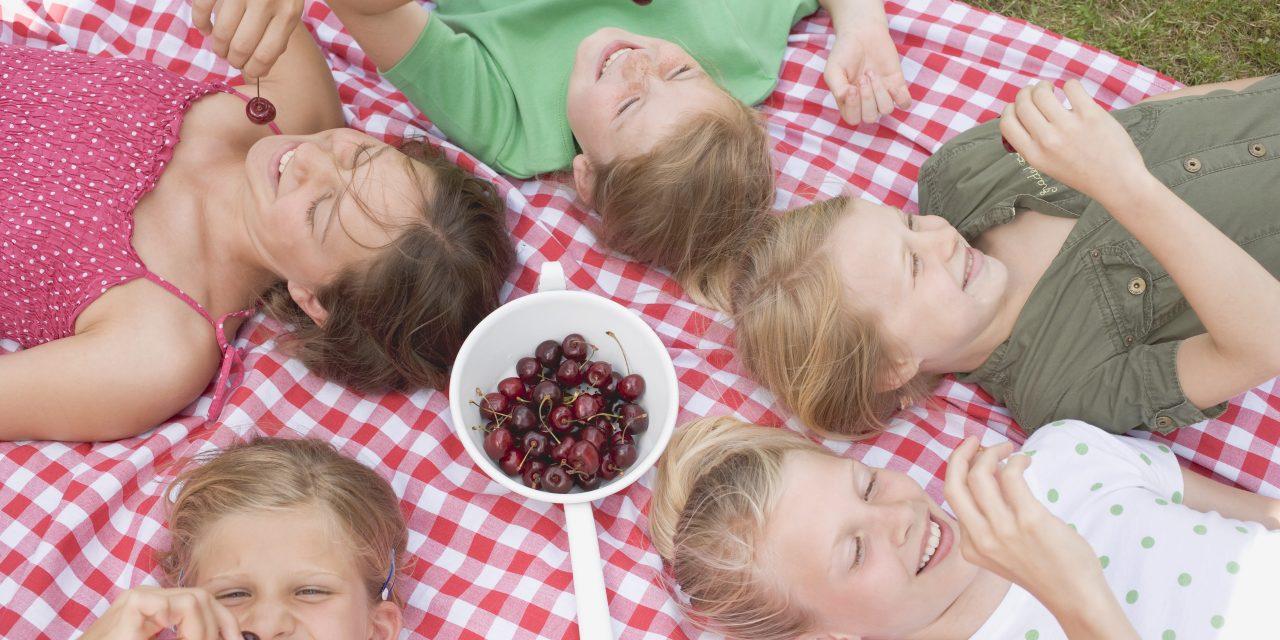 Igazi piknikhangulat vár szombaton a Margitszigeten