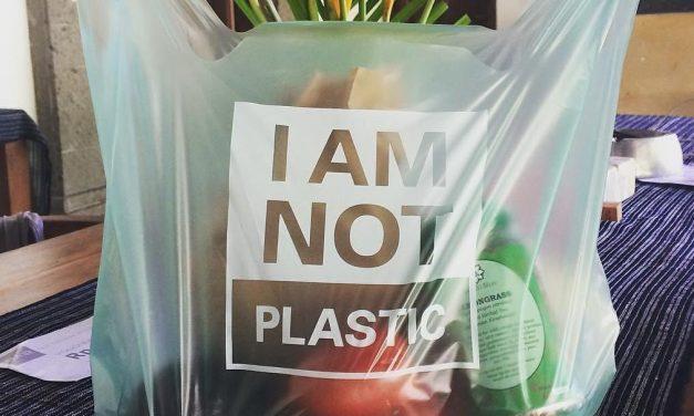 """A 100 % növényi """"műanyag"""" zacskó lehet a megoldás?"""