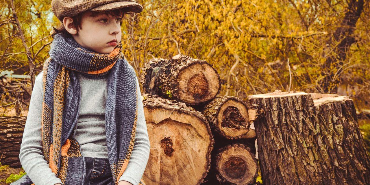 Hatszáz fát vághatnak ki a Városligetben