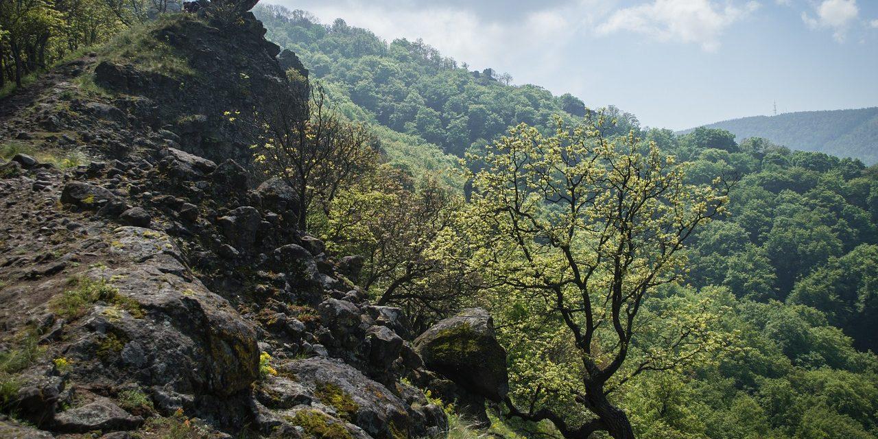 Átmenetileg lezárták a pomázi Kő-hegy területét