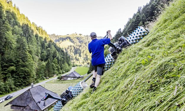 Brutális fűnyírószörnyek pusztítanak Németországban