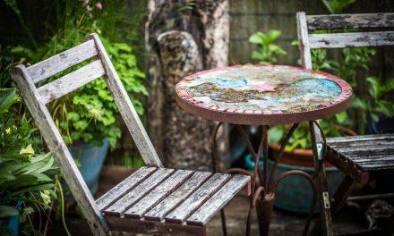 Nem spórolhatod meg: törődj a fa cuccokkal a kertben