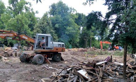 """Nagy területen vágtak ki fákat a Normafánál: """"tájba illő"""" kiszolgálóépület épül"""