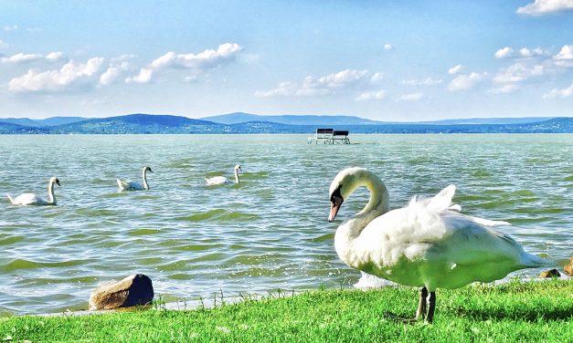 A szezon előtti Balaton egy relaxációs gyakorlat