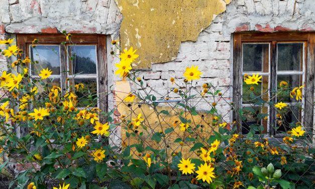 Ízléstelenség: az én házam, az én váram?
