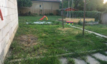 Kertszépítés – először tervezzünk