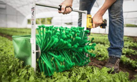Leveles zöldségek betakarítása másodpercek alatt?