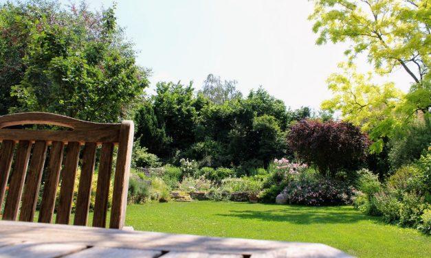 Rácz Péter kertje Budajenőn: ódon romantika 400nm-en
