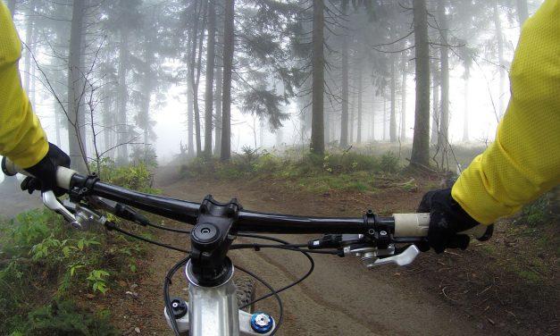 350 kilométeresre bővült a Pilis Bike erdei kerékpáros úthálózat