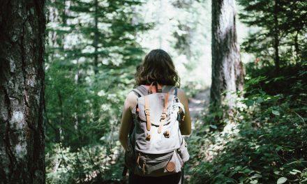 Téged mi zavar az erdőben?
