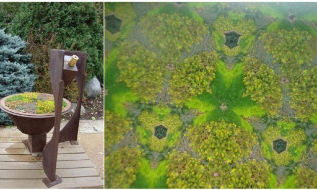 Pszichedelikus virágtánc a kaleidoszkópban