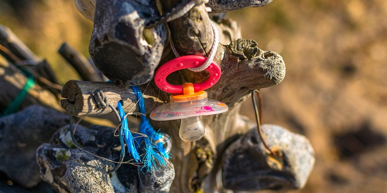 Már a tengeri madárfiókák gyomra is tele van műanyaggal