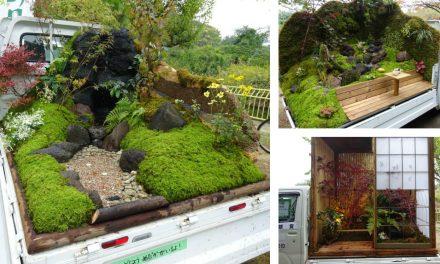 Egy furcsa kertépítő verseny Japánból