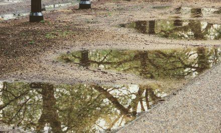 Adót vetnének ki az esővízre Kiskunhalason