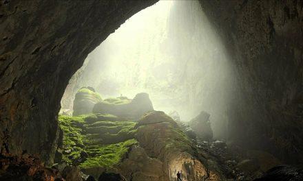 Saját dzsungelt is rejtett a világ legnagyobb barlangja
