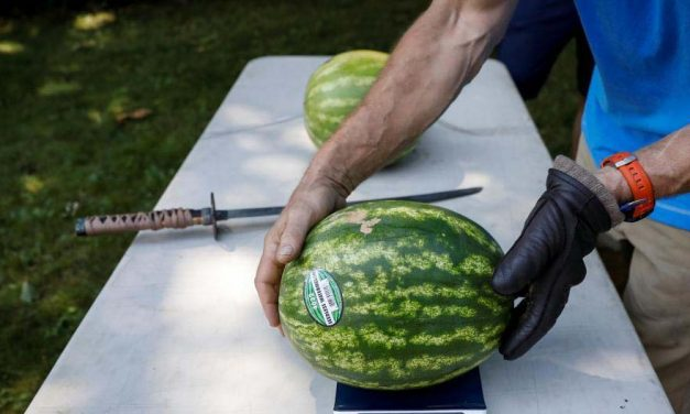 Ilyet még sosem tettek egy görögdinnyével