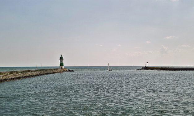 Oxigénhiány miatt lassan belefulladnak a halak a Balti-tengerbe