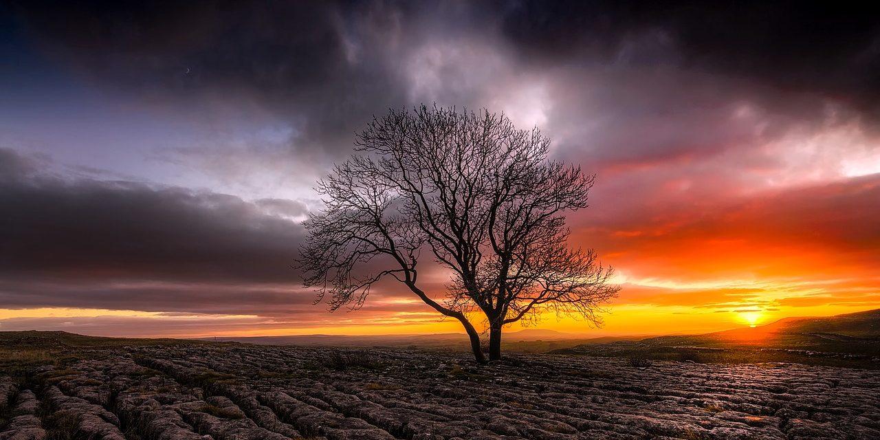 60 éve nem tapasztalt szárazság és hőhullám sújtja Nagy-Britanniát