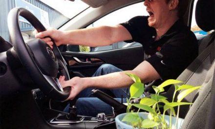 Ő a világ legjobb növényfelvigyázója