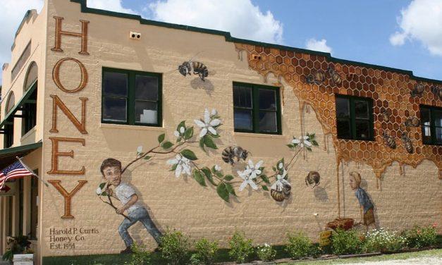 Haldokló méhecske késztette a gigantikus munkára a művészt