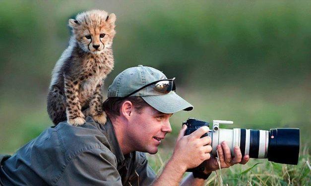 Természetfotósok és különleges barátaik