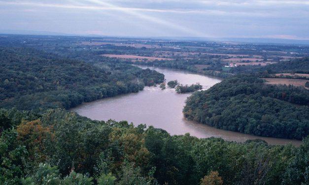 Mára már a magyar folyók 90 százaléka eltűnt