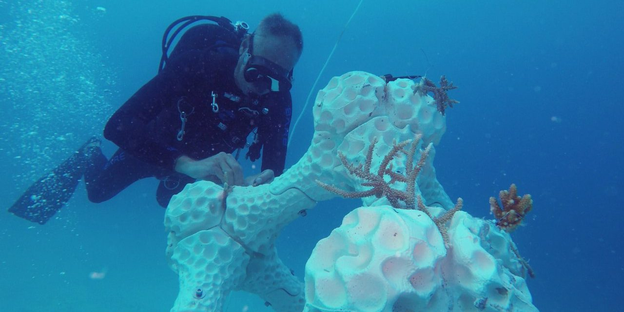 A világ legnagyobb, 3D nyomtatással készült korallzátonyát telepítették a tengerbe