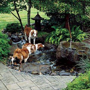 Miért ásnak a kutyák a kertben… és hogyan akadályozzuk meg őket ebben?