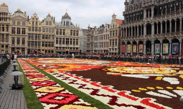 Ismét virágszőnyeget borítottak Brüsszel főterére