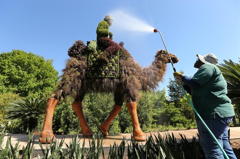 Így készültek az Atlantai Botanikus Kert látványos növényszobrai