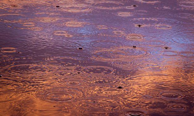48 fokos eső esett Kaliforniában