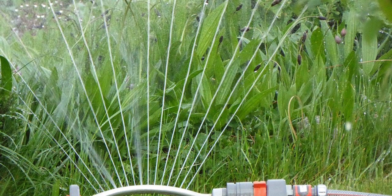 Víztakarékosságra kéri fogyasztóit az ivóvíz szolgáltató