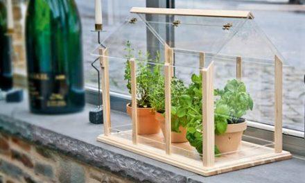 Mini üvegházak, hogy télen is zöld legyen a balkon