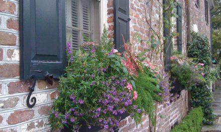 A lusták menedéke: a négyévszakos balkonláda