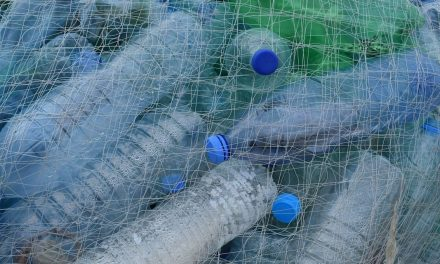 Műanyaghulladékból készülhetne üzemanyag egy technológia segítségével