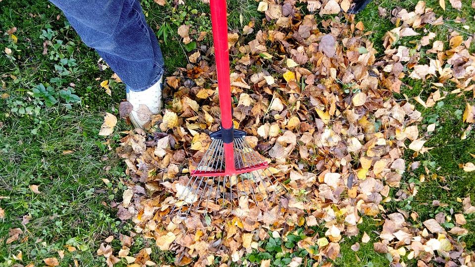 Az ősz 17 pillanata – aktuális kerti munkák