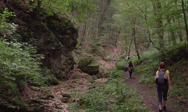 Túrázó-kisokos – minden, amit a túrázásról tudnod kell