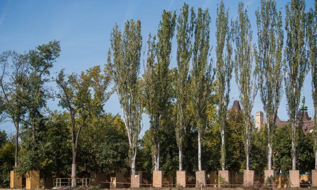 Megkezdődött a Magyar Zene Háza építése a Ligetben