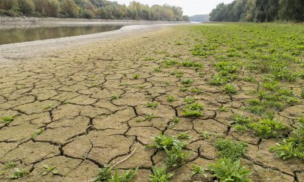 Soha nem volt ilyen alacsony a Duna vízállása