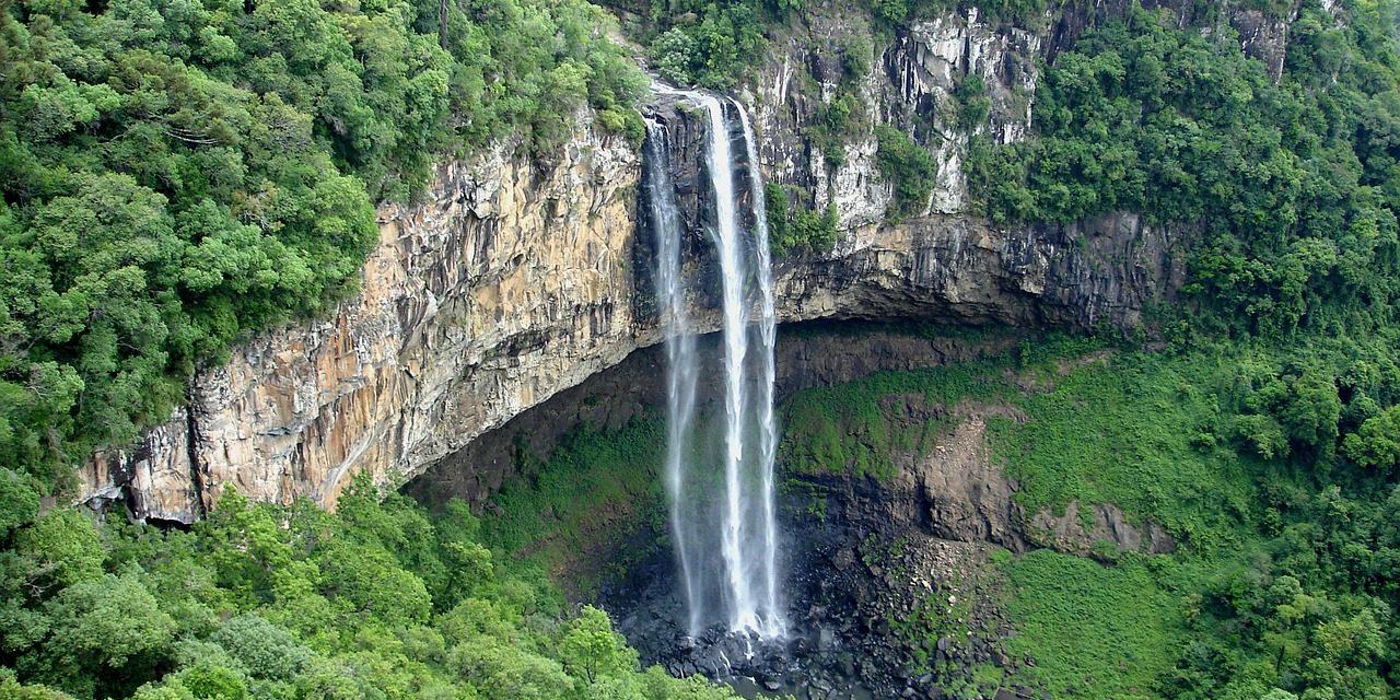 Veszélyben van a brazil esőerdő, mert az új elnököt nem érdekli a környezetvédelem