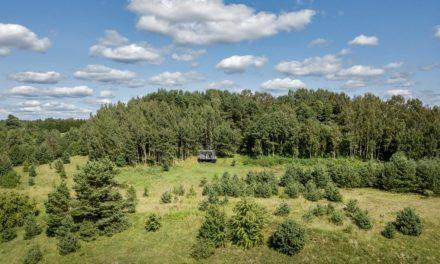 Titkos menedék egy litván erdőben