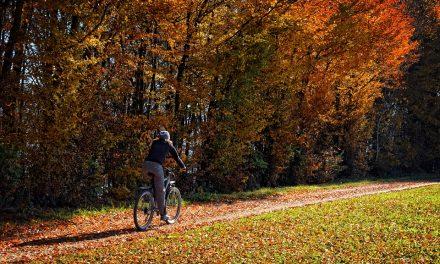 Biciklizz. Mindig. Ősszel is.