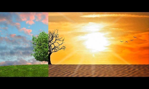 Állítsuk meg a klímaválságot – most azonnal!