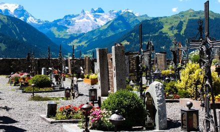 A temetőkertész bölcsessége