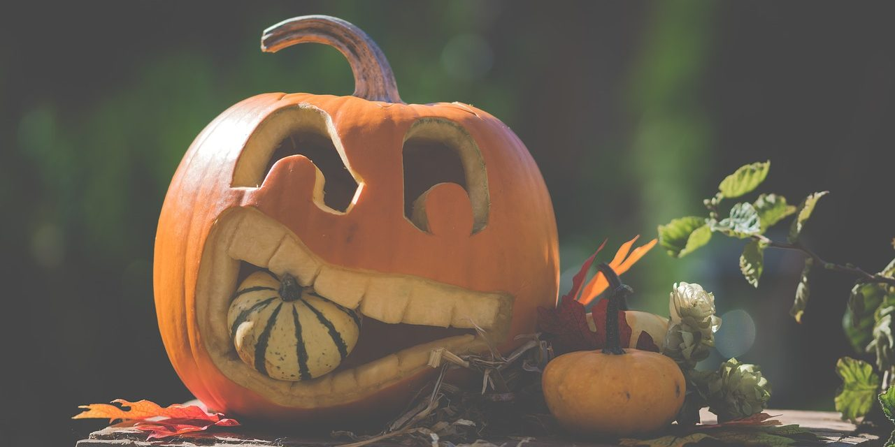 Halloweeni programok pénteken a Füvészkertben