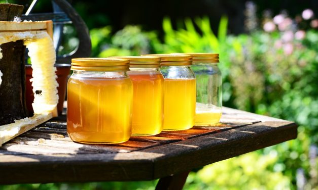 Alig eszik mézet a magyar, pedig méznagyhatalom vagyunk