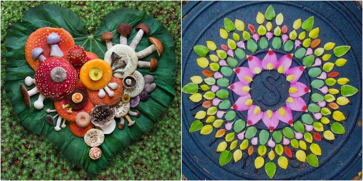 Őszi mandalák a hét képein