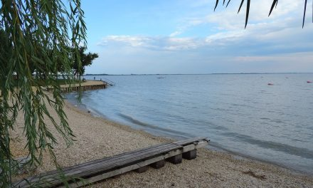 Sok a higany a Fertő tó halaiban