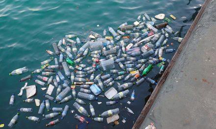 47 évvel ezelőtt kidobott műanyag flakont mosott partra a víz