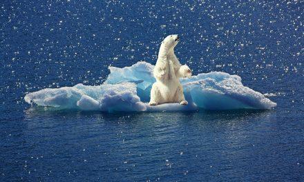Riadót fújt az ENSZ: csak 20 évünk maradt megmenteni a Földet